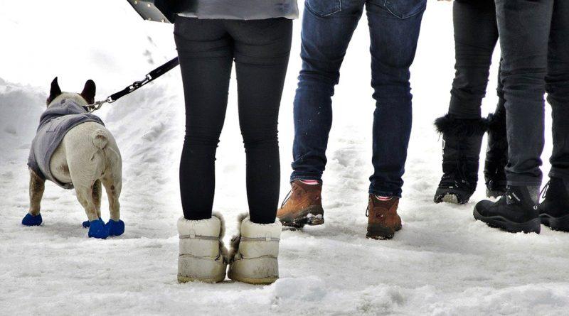 Las botas y crampones ideales para caminar por la nieve